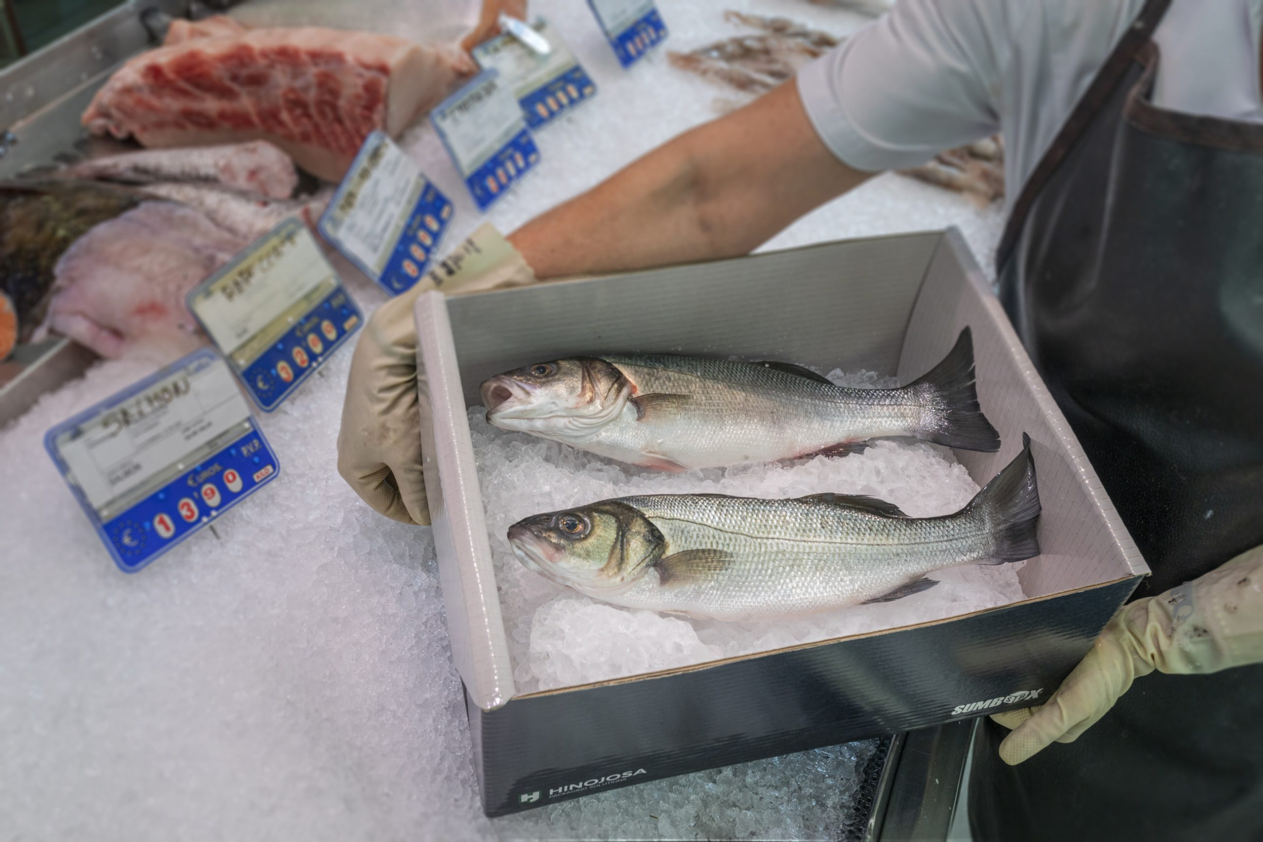 Hinojosa presents sustainable packaging for seafood at Conxemar